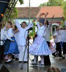 Den-Petrovca-2015-081
