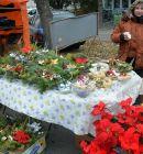 Vianocne-trhy-2013-31
