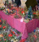 Vianocne-trhy-2013-52