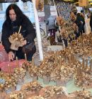 Vianocne-trhy-2013-55