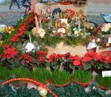 Vianocne-trhy-2014-118
