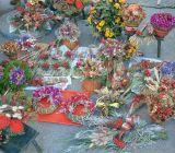 Vianocne-trhy-2014-139