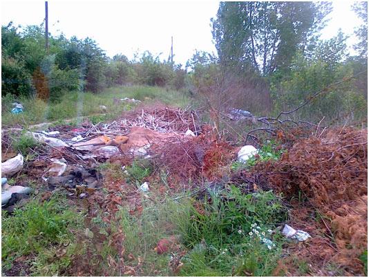 ocistimo-srbiju-2012-2.jpg