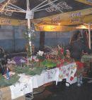 vianocne-trhy-2012-29